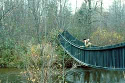 Rifle river state recreation area for Rose city motors michigan